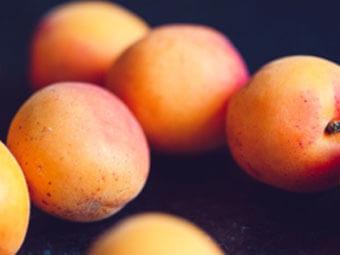 Prunus Armeniaca (Apricot) Kernel Oil